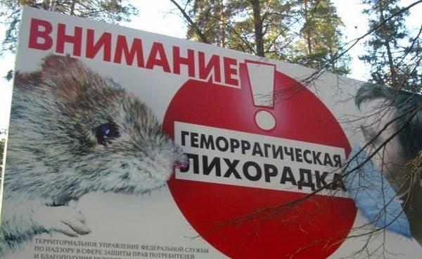 Дорожный баннер мышиной лихорадки