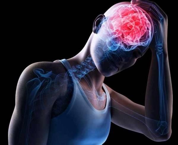 Цветная схема мозга с опущенной головой