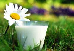 молоко и травы при кашле